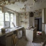 Liability to Viability – Newstead Abbey Conservation